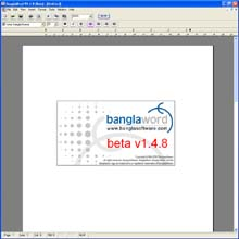 BanglaSoftware Group. BanglaWord  processor software screen grab: Options, auto save tab